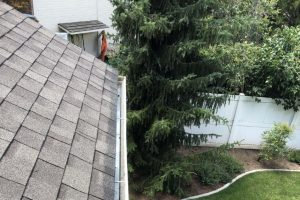 Clean Gutter on house